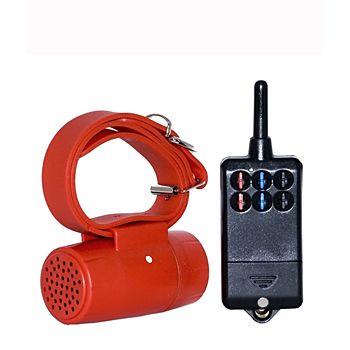 BEEPER CON RADIOCOMANDO CO-04 multisound